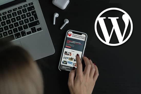 Experto Diseñador Wordpress Madrid Barcelona